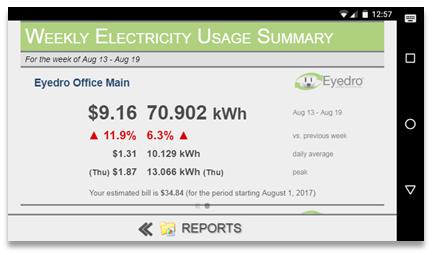 Screenshot of MyEyedro Client - Mobile Reports